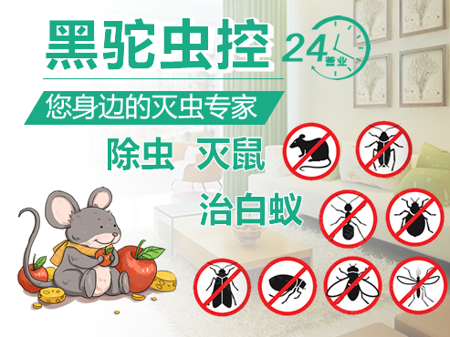 杭州白蚁防治公司:提醒